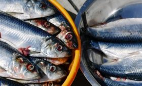 ФАС заподозрила власти Приморья в нарушении из-за снижения цен на рыбу