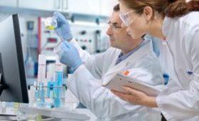 Американцы научились клонировать сперматозоиды