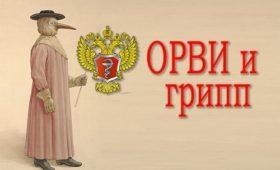 Минздрав рассказал о заболеваемости гриппом и ОРВИ в России