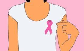 Рак молочной железы включает 11 болезней с разной вероятностью рецидива