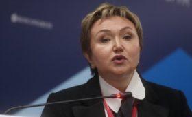 Разбившийся с Наталией Филевой бизнес-джет  принадлежал S7 Group