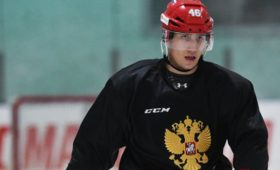 Любушкин, Михеев иКадейкин покинули расположение сборной России похоккею