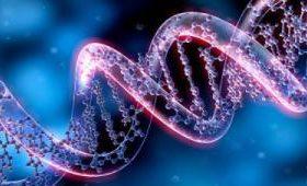 Ученые из США подтвердили безопасность генной терапии ВИЧ инфекции