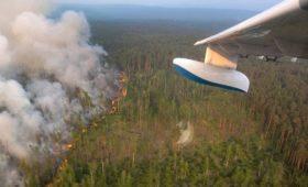 Реакция соцсетей на пожары. Что не так с акцией #СпаситеСибирь