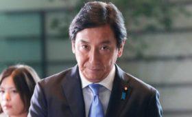 Куратор связей с Россией в кабмине Японии уволился из-за истории с дынями