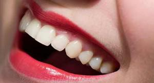 В скором времени зубы станут источником лекарств