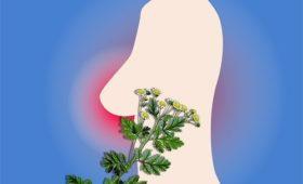 Альтернативные методы лечения при раке молочной железы могут привести больше вреда, чем пользы
