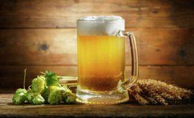 Комитет Госдумы поддержал возвращение пива настадионы
