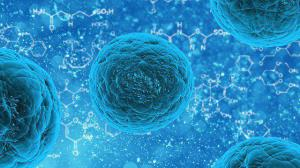 Ученые разработали лечение цирроза печени генной терапией