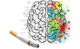 Как курение действует на мозг