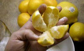 Быстро снизить давление поможет обычный лимон