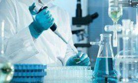 Вирусы с измененными генами подарят человеку бессмертие