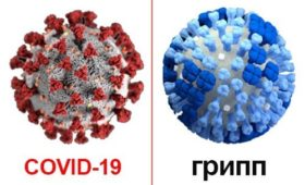 Чем коронавирус отличается от гриппа, и как перестать паниковать?