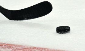 Хоккейный чемпионат Германии досрочно завершён из-закоронавируса