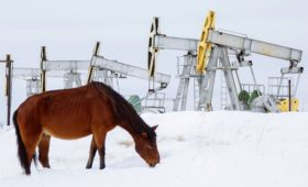 Российская нефть подешевела до $19 за баррель