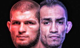 Коронавирус нипочем: UFCнашел место длябояХабиба