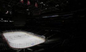 Комиссар НХЛ: намбыхотелось завершить сезон