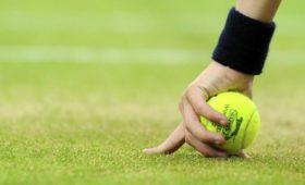 Лучшему теннисисту Грузии грозит тригода заизбиение бывшей жены
