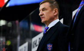 Источник: Брагин возглавит сборную России похоккею
