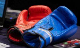Боксёр Тищенко начал подготовку ктитульному бою