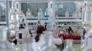 Ученые нашли стволовые клетки костей в теле человека