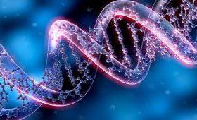 Ученые приблизились к редактированию ДНК