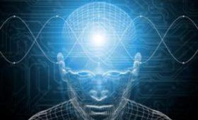 Названы три признака высокого уровня интеллекта