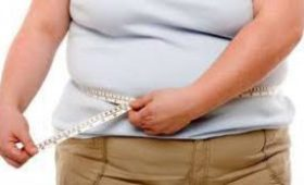 Ожирение медленно разрушает мозг