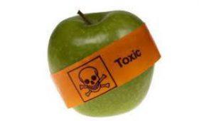 Токсичные вещества в упаковках продуктов могут причинить вред здоровью