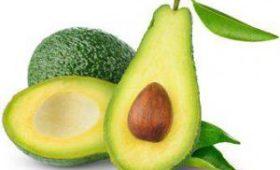 Обнаружено новое полезное свойство авокадо для организма